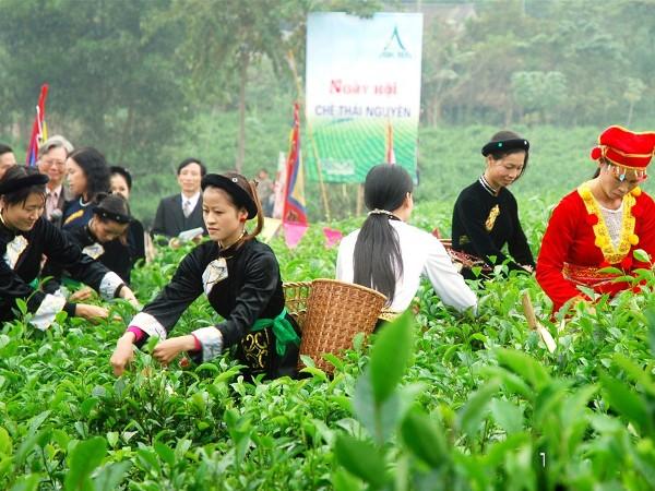 Chợ quê ẩm thực tại Liên hoan quốc tế chè Thái Nguyên 2011